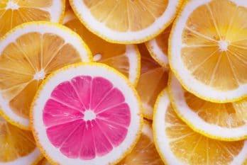 Découvrez notre blog et enrichissez vos réflexions par des innovations culinaires performantes !