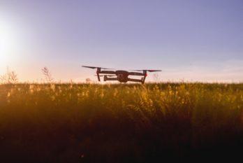 Food Tech : alliée de l'innovation agroalimentaire ou future rivale de l'industrie agroalimentaire classique ?